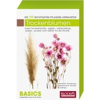 BASICS Pflanzen-Lernkarten Trockenfloralien/Früchte