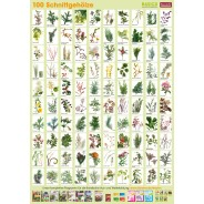 Pflanzen-Poster Schnittgehölze