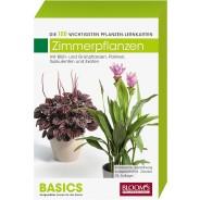 Pflanzen-Lernkarten Zimmerpflanzen