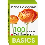 Int. BASICS Pflanzen-Lernkarten Schnittblumen Vol. I Englisch