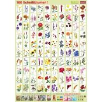 Pflanzen-Poster Schnittblumen I