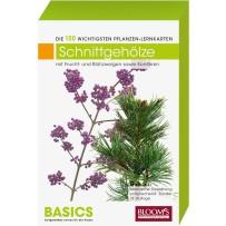 BASICS Pflanzen-Lernkarten Schnittgehölze