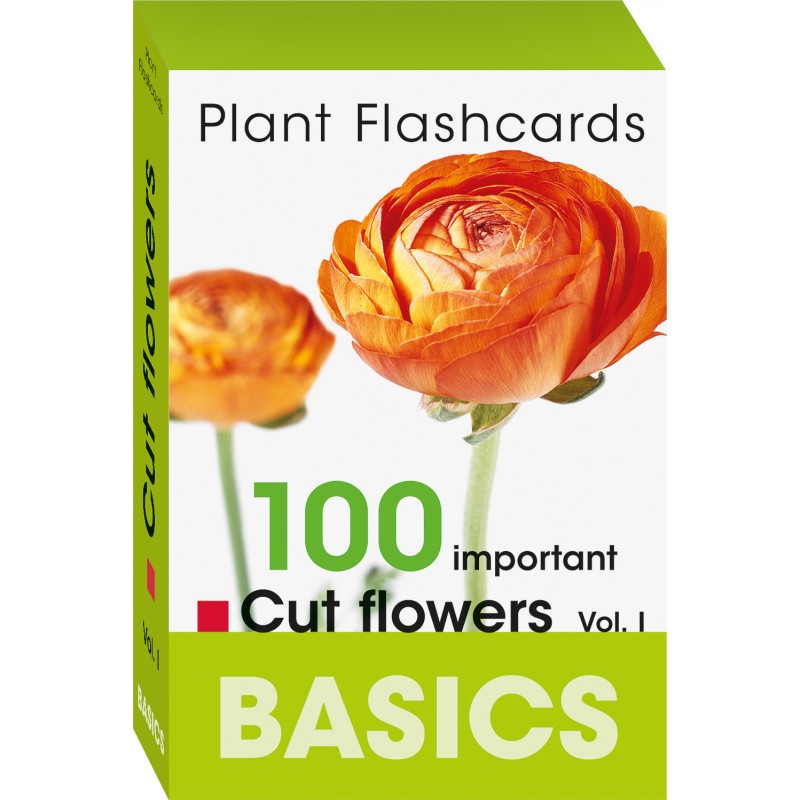 how to cut flash cards