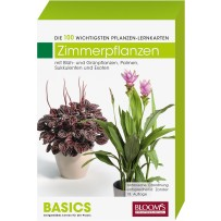 BASICS Pflanzen-Lernkarten Zimmerpflanzen
