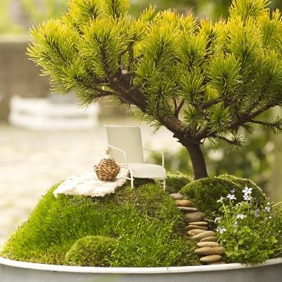 Minigarten-Set Picknick